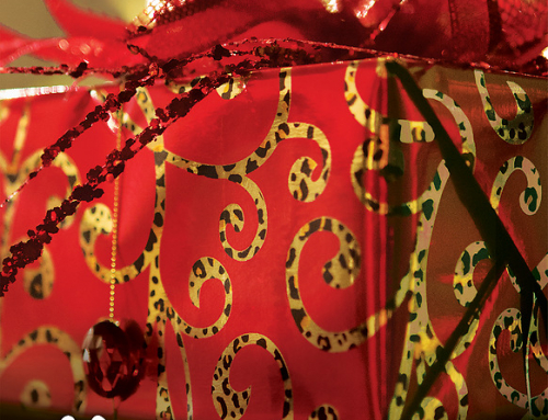 """""""Under Wraps, The Gift We Never Expected"""" Advent Study, Thursdays with meal at 6:00 p.m. and study beginning at 6:30."""